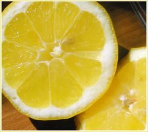 struttura-limone