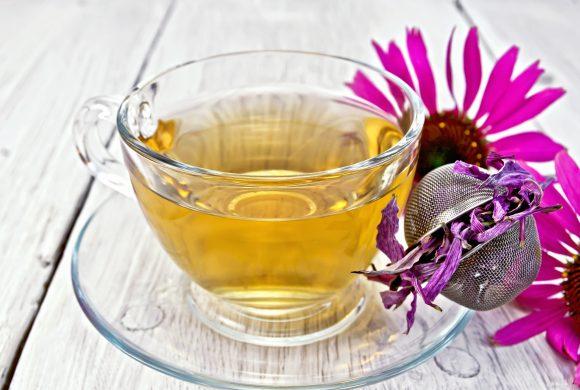 Rimedi naturali contro il raffreddore: Echinacea e succo di limone