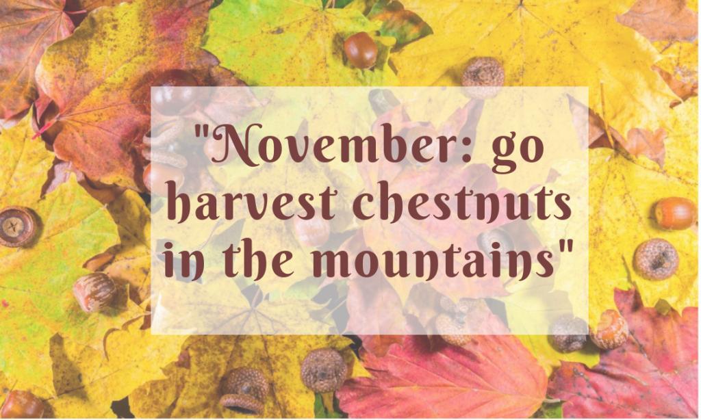 Novembre va in montagna e abbacchia la castagna. (2)